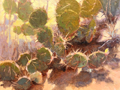 Prickly Heat